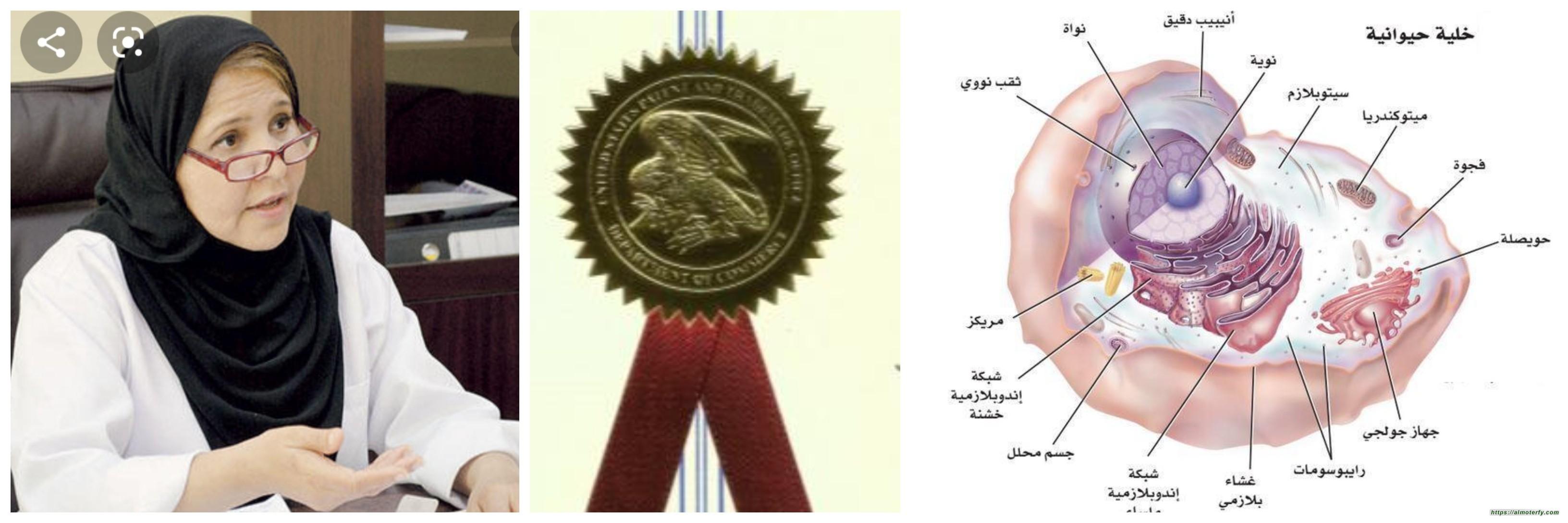 المنصور : السعودية الأعلى عالمياً في هشاشة العظام ولدينا العلاج الأمثل ..