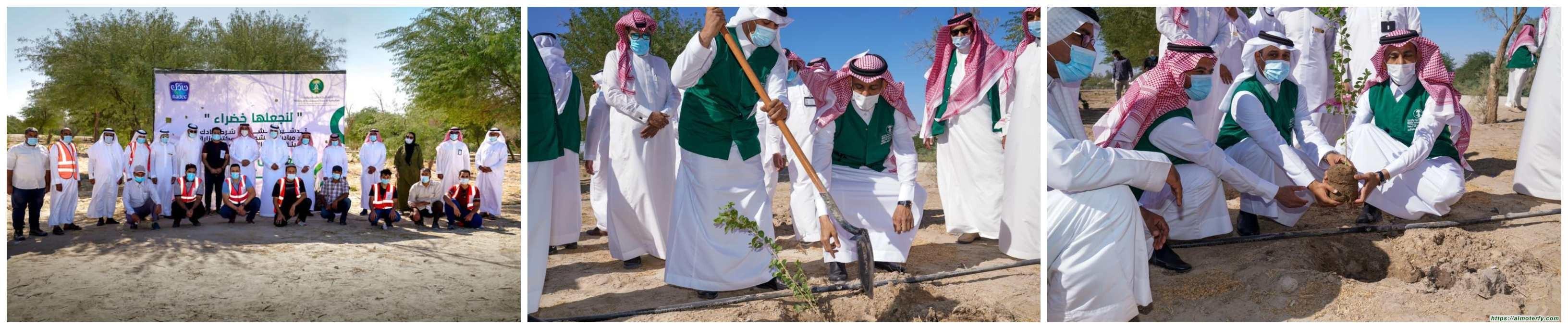 """"""" البيئة """" بالأحساء تطلق مبادرة لنجعلها خضراء بزراعة 85 ألف شجرة في عدد من المواقع بالمحافظة بتعاون مع"""" نادك """""""