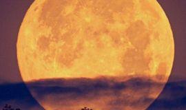 « بدر رمضان » اول قمر عملاق 2021 .. الإثنين